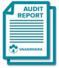icon-audit-report