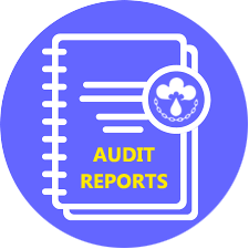 icon-audit-reports