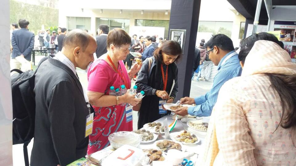 Khushi exhibition at CSR summit at Jaipur