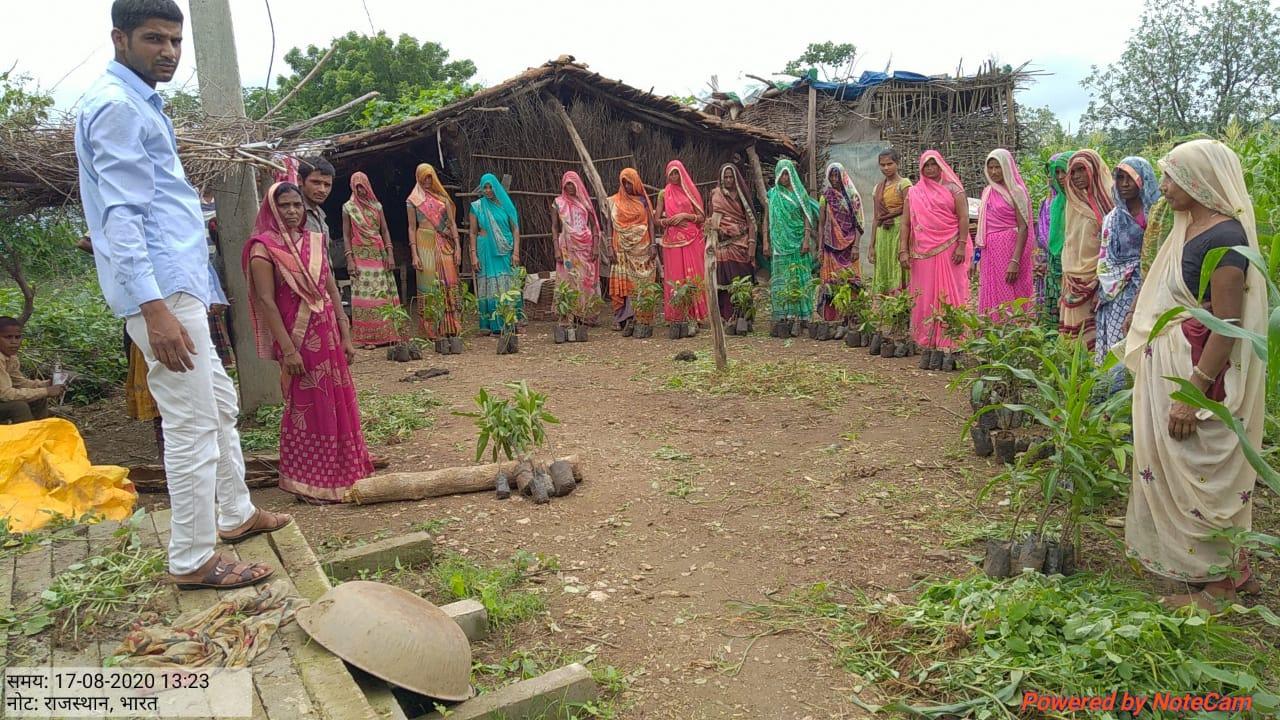 Multi-purpose-Planting Campaign-Vaagdhara-Banswara-1