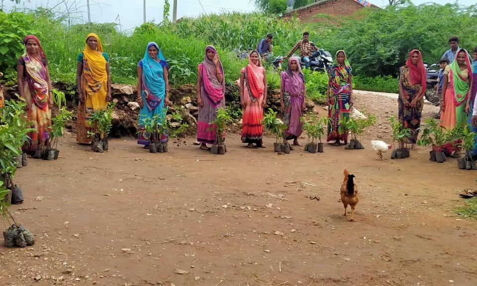 Multi-purpose-Planting Campaign-Vaagdhara-Banswara-2