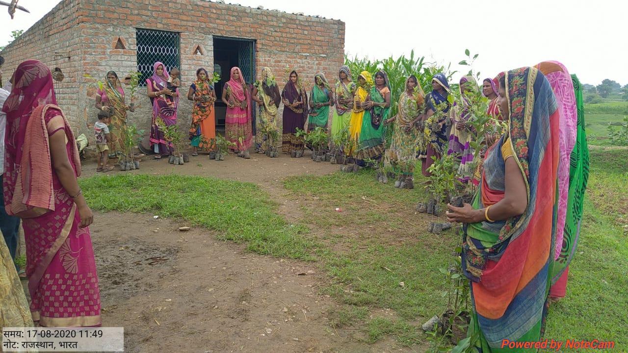 Multi-purpose-Planting Campaign-Vaagdhara-Banswara-3