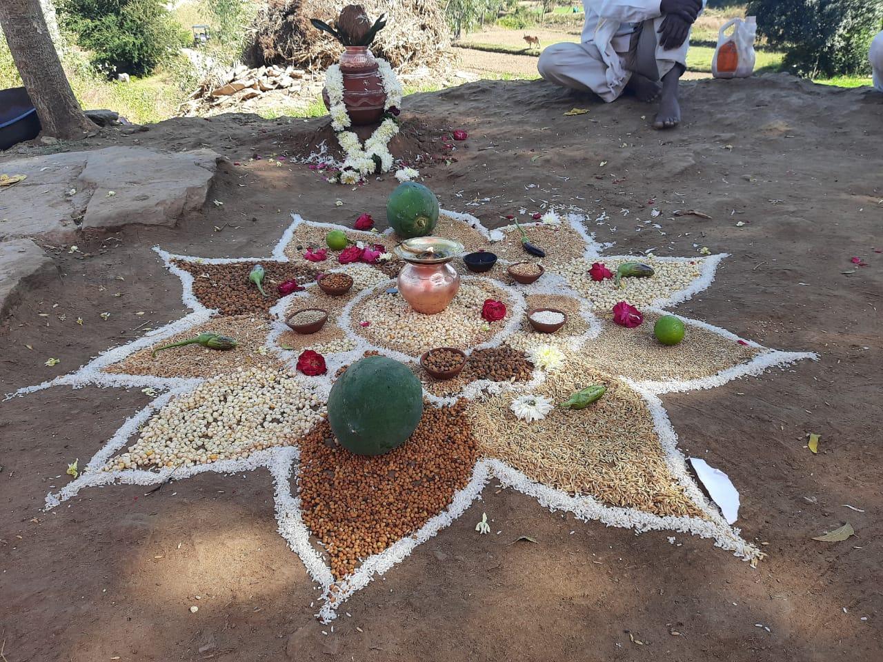 vaagdhara-world-soil-day-2020-7