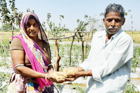 Horticulture-Training-Changed-Kanubhais-Life-sml